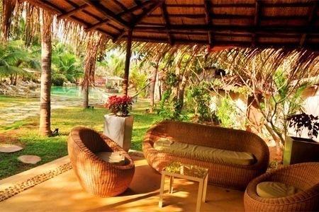 Clematis, Candolim, Goa